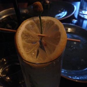 Szechuan Button Cocktail