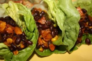 Tex Mex Lettuce Wraps